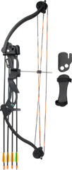 Raven Compound Bow Set