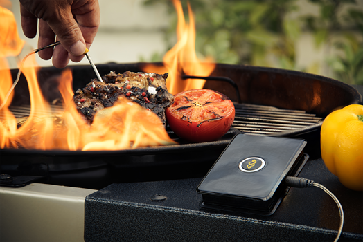 WeGrill One Grill Thermometer