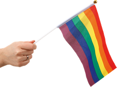 Rainbow handflag 6-pack