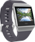 Fitbit Ionic Blue Gray/White